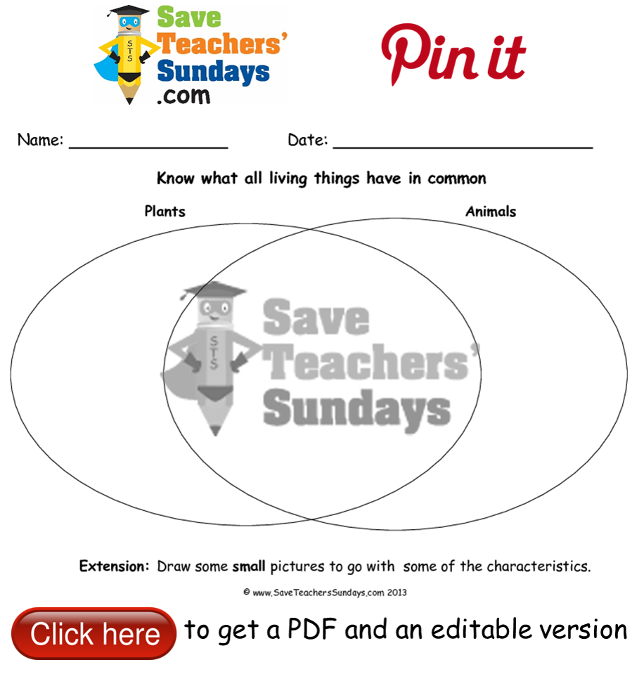 worksheet Classifying Plants And Animals Worksheets characteristics of all living things plants and animals venn diagram worksheet go to http