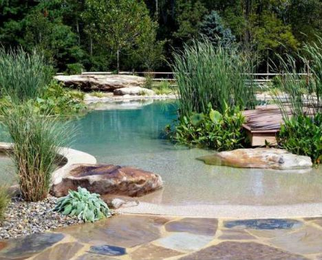 17 Backyard Beaches, Natural Swimming Pools & More ...