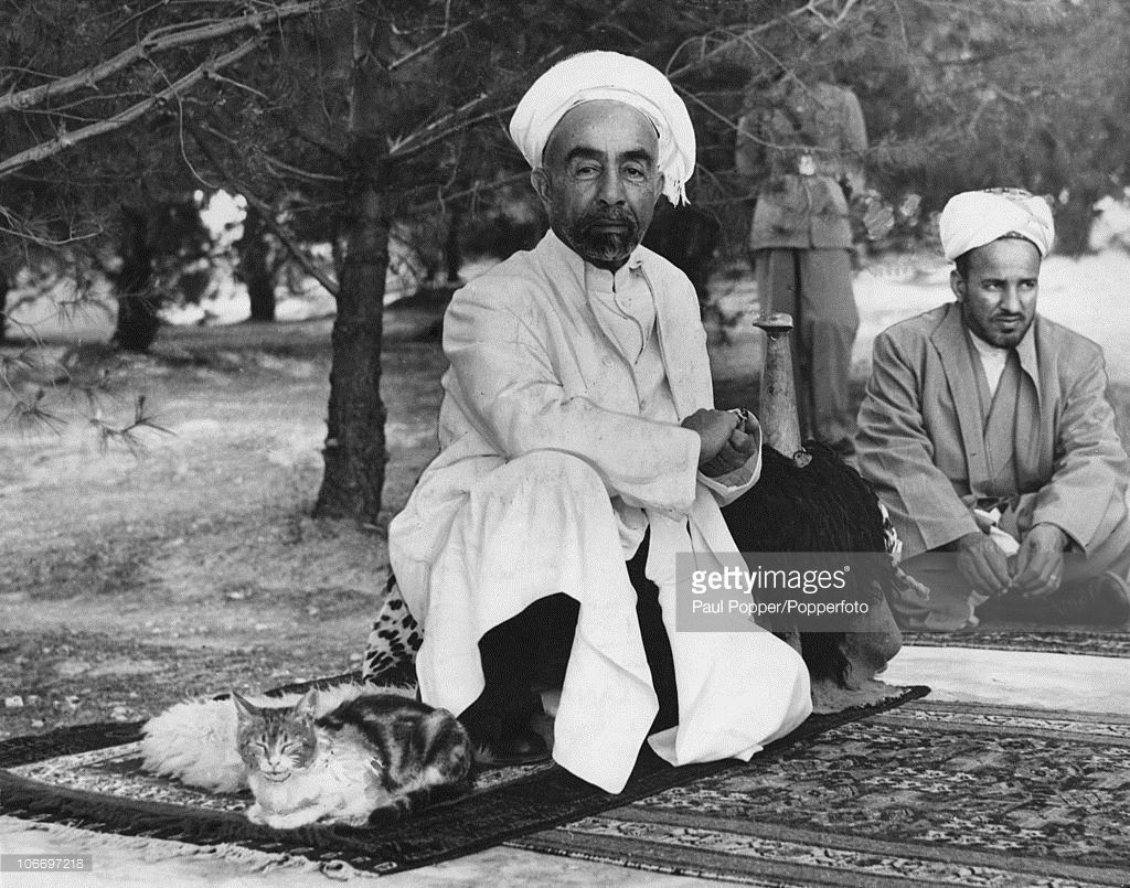 King Abdullah I of Transjordan (later Jordan) (1882 - 1951) shares his rug with a pet cat in the grounds of Raghadan Palace in Amman, Jordan, 14th June 1948. He is resting his arm on a saddle.