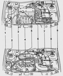 Ford Fiesta engine diagram  motor partments with engines ZetecSE of 1,25 and 1,4 l (above