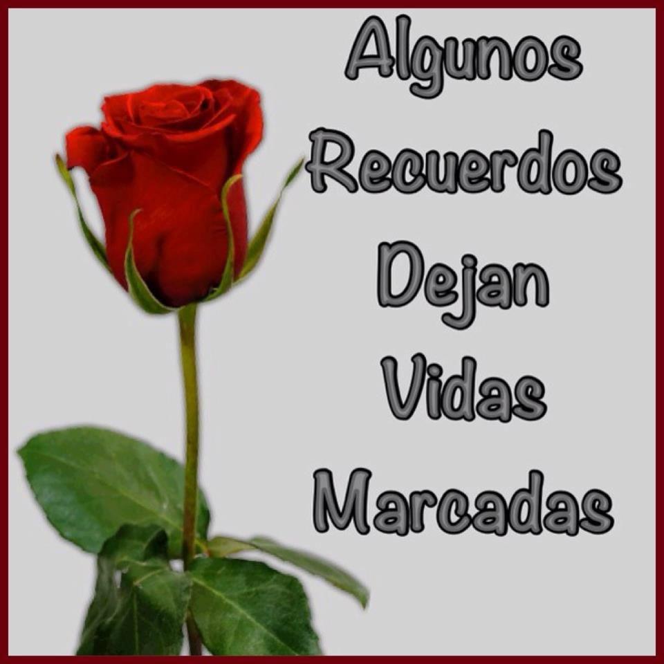 Imagen de una rosa llena de amor con frase de reflexi³n para dedicarle a esa persona que alguna vez estuvo en tu vida puedes descargarlo gratis y