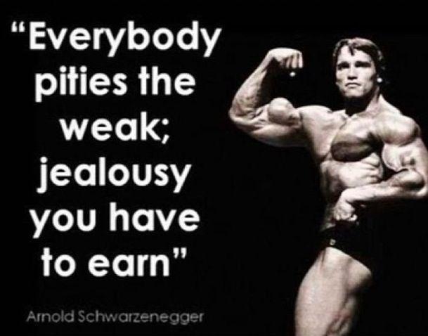 Arnold Schwarzenegger Wise Quote Workout Motivation