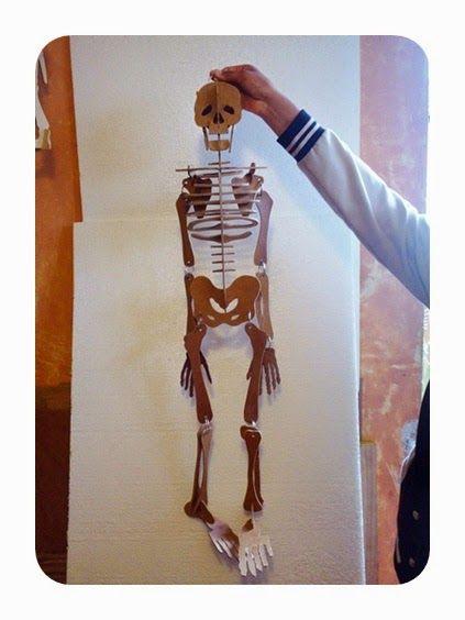 Como Hacer Un Esqueleto Humano Con Material Reciclable Buscar Con Google Esqueleto Humano Para Niños Imagenes Del Esqueleto Humano Maqueta Cuerpo Humano