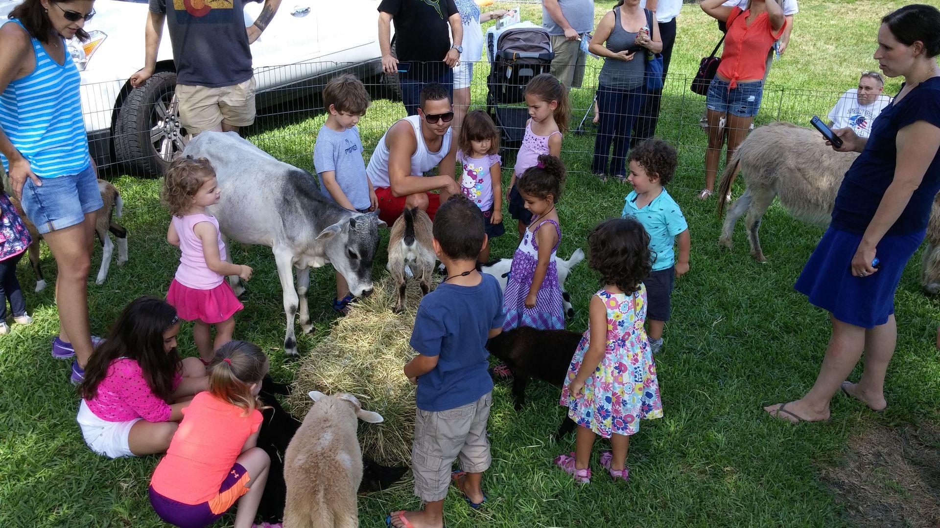 Farm Parties & Petting Zoo Parties Petting zoo party