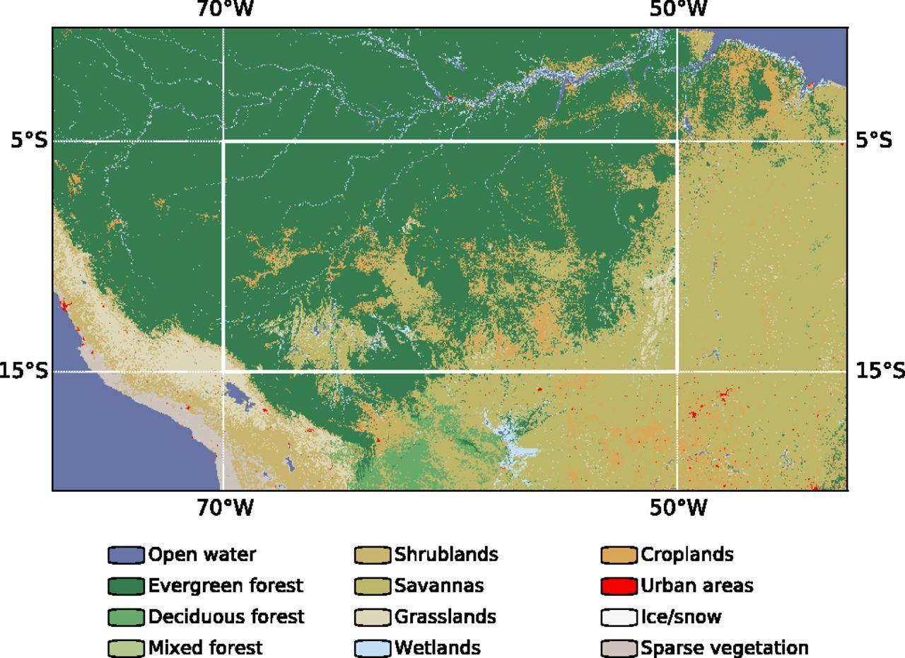 Rainforest Deforestation Amazon Amazon Rainforest Trees