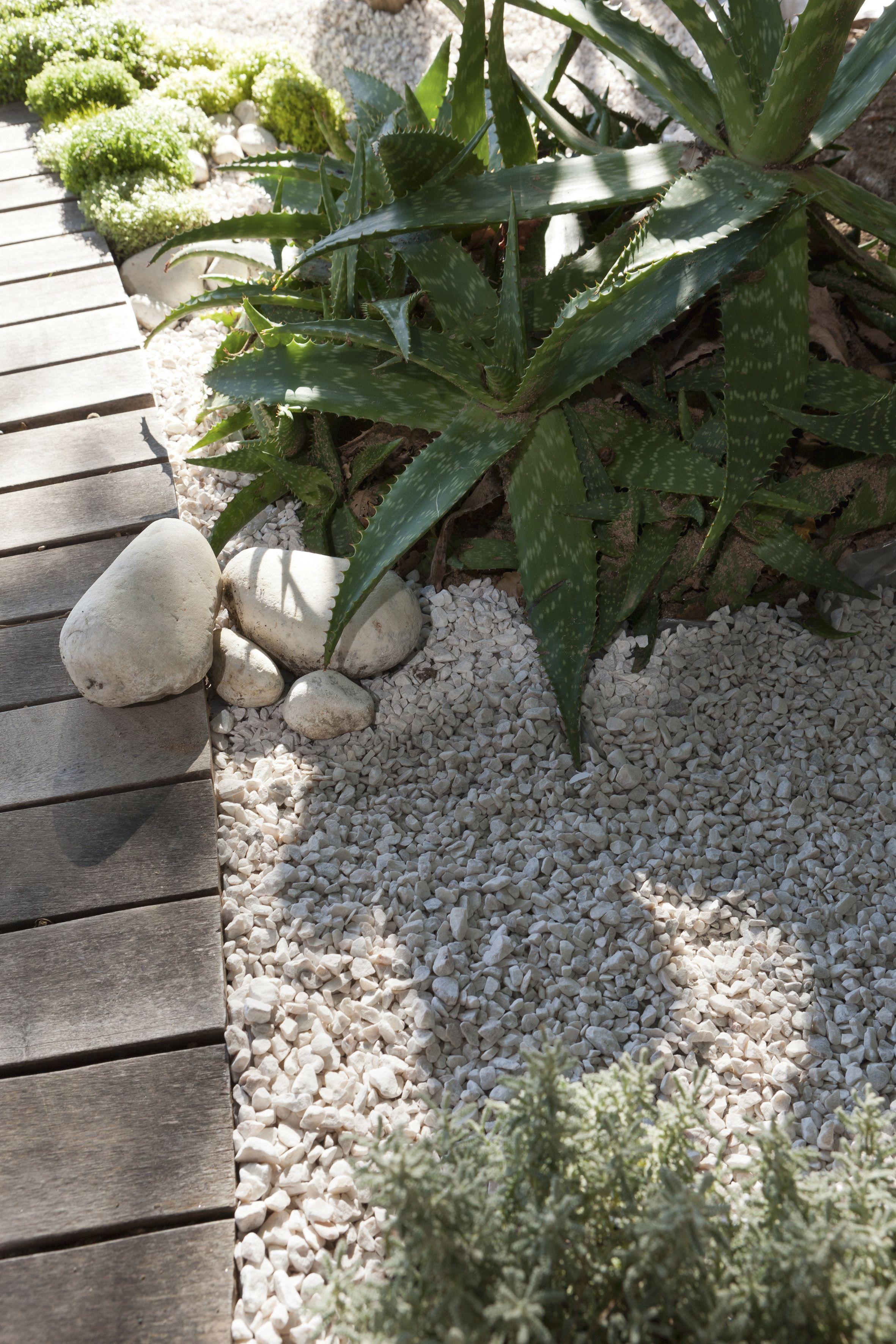 De La Terrasse Au Jardin Graviers Et Galets Apportent Du Style A Vos Exterieurs Tout En Delimitant Les Espaces Amenagement Jardin Jardins Jardin En Briques
