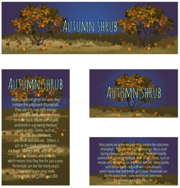 Series cards with autumn tree Newsletter Template $400 - newsletter templates word 2007