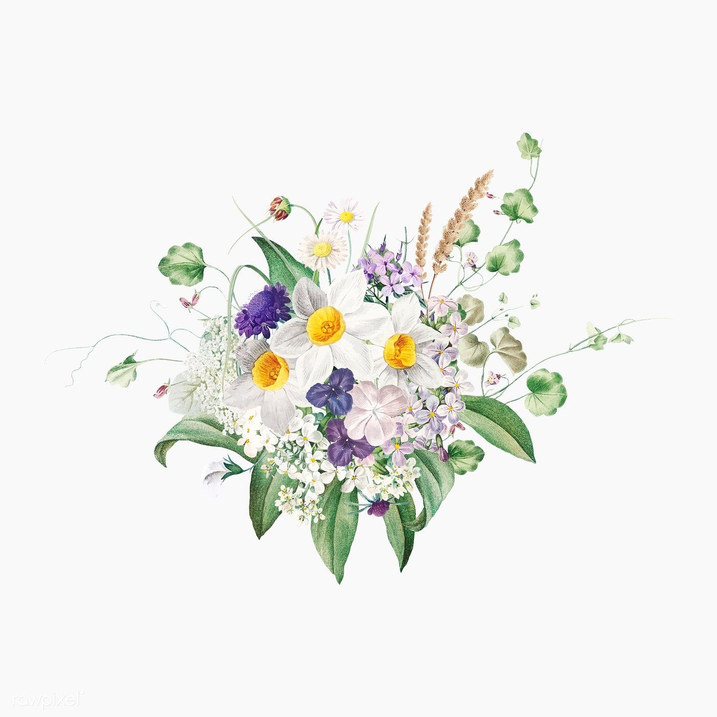 Beautiful summer flowers bouquet vector free image by