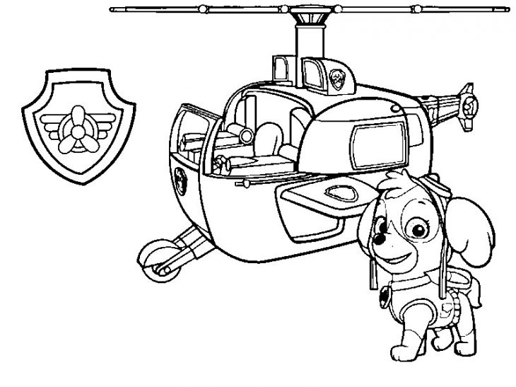 Skye from Paw Patrol and her helicopter