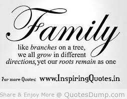 family reunion themes google search family pinterest quotes