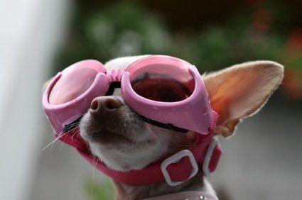 love the goggles =)