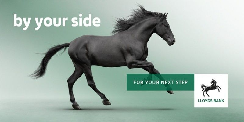 Image Result For Lloyds Bank Advertising Horses Lloyds Bank