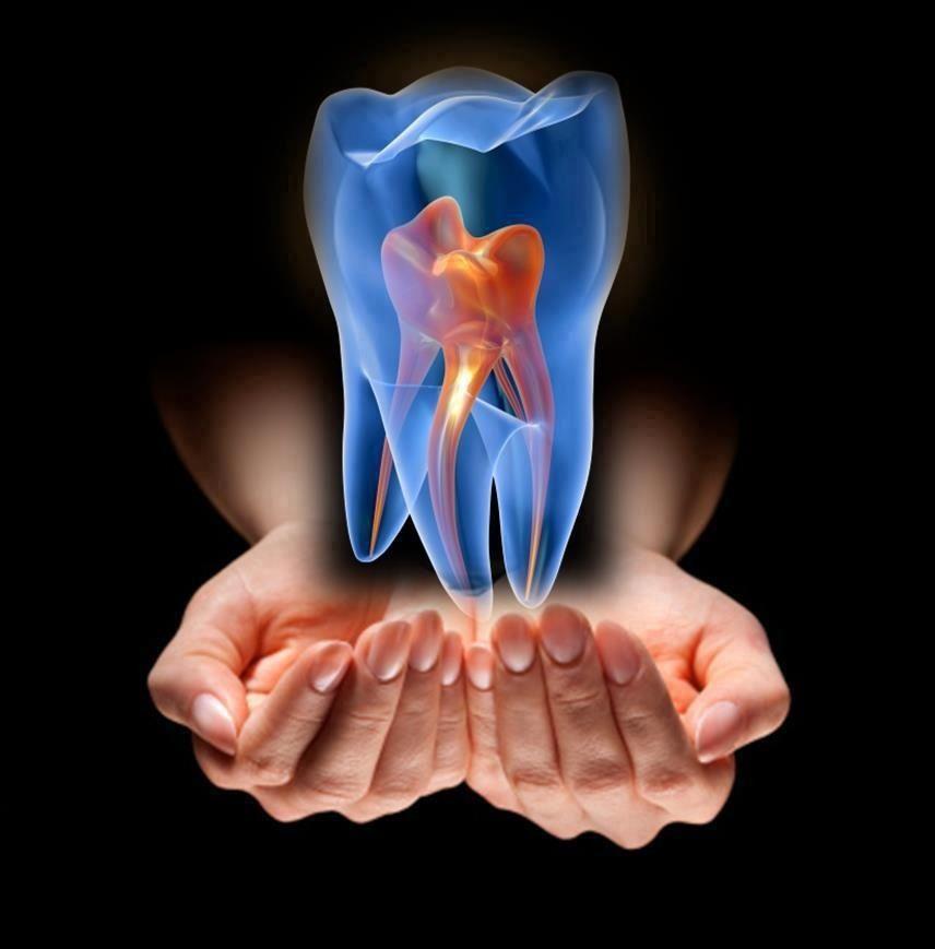 Pin de Camila Costa en Dentistry - Teeth | Pinterest | Odontología ...