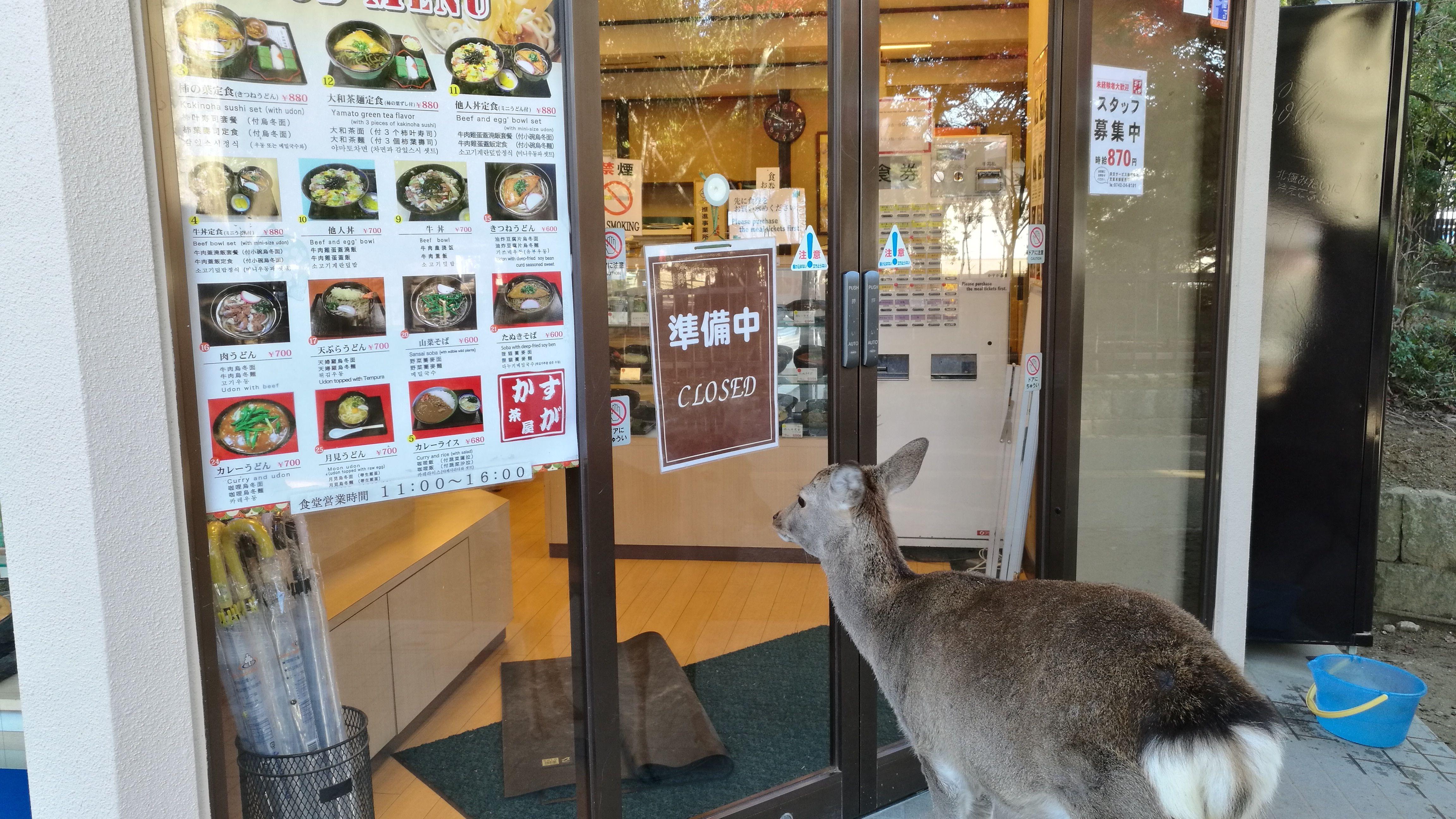 Esperando que abran el restaurante