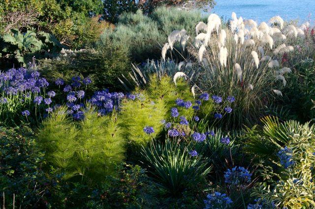 El jardin mediterráneo ahora en tu casa – Consejos
