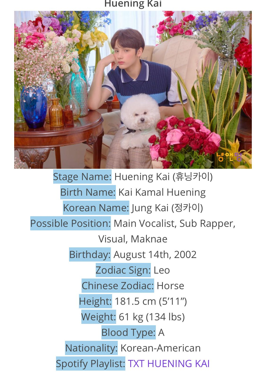Huenibgkai Facts By Kprofiles Kprofiles Txt Follow Me For More Zoeysartaesthetic Txt Facts Beginners Thank you so much for doing this list and the kpop birthday list! kprofiles kprofiles txt follow