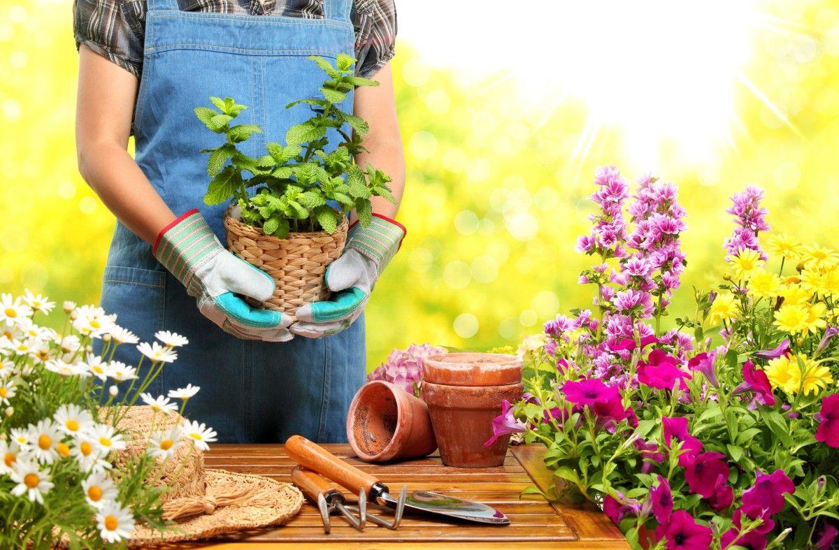 ▷ 1001 + conseils et idées pour aménager son jardin comme un pro ...