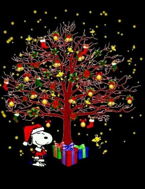 I Love The Snoops He S The Coolest Snoopy Christmas Funny Christmas Pictures Christmas Pictures