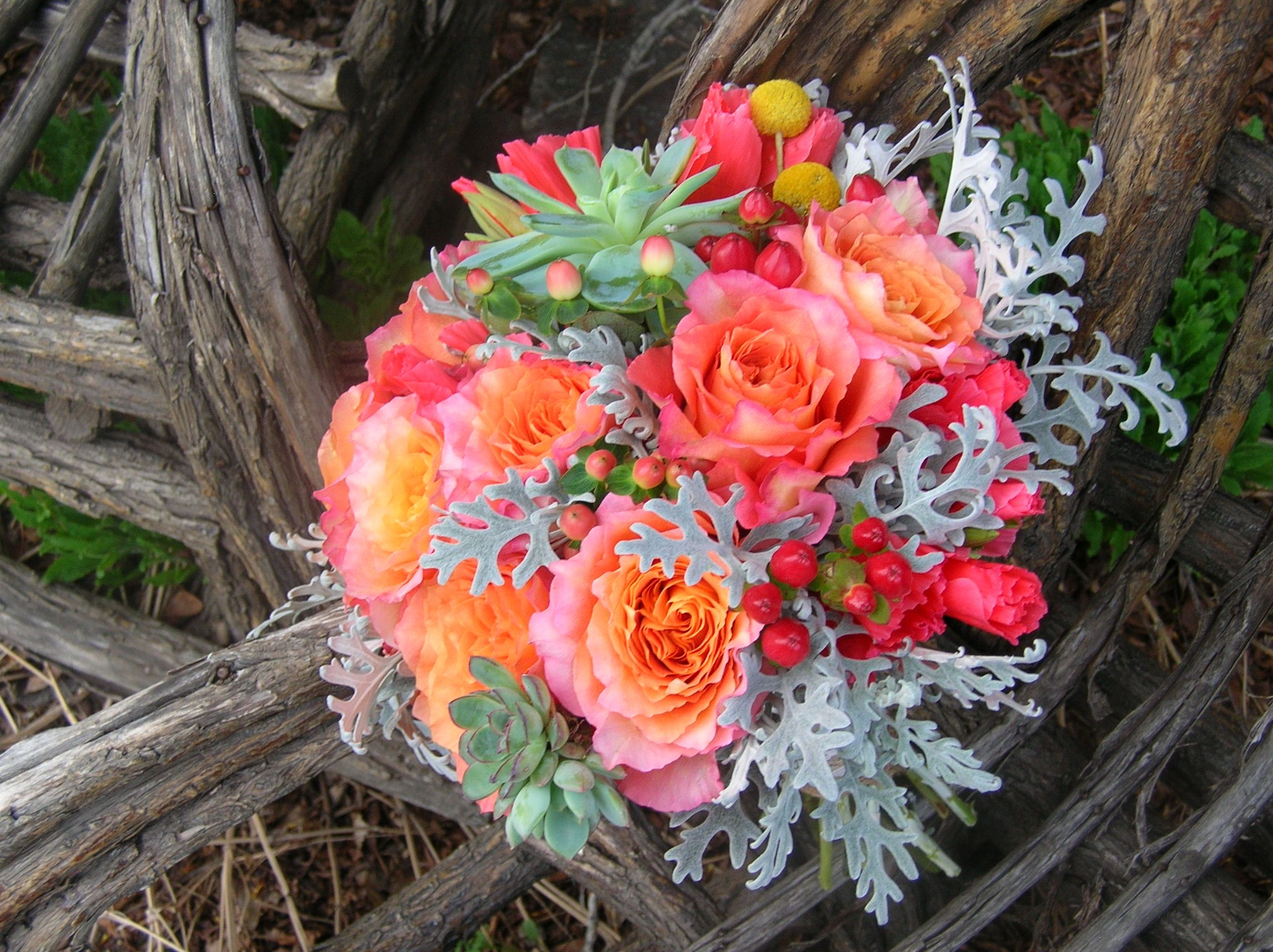Free Spirit Roses Lacy Dusty Miller Succulents Coral Godetia Red Berries Stems Flower Shop Evergreen Flower Arrangements Coral Flower Bouquets Fall Flowers
