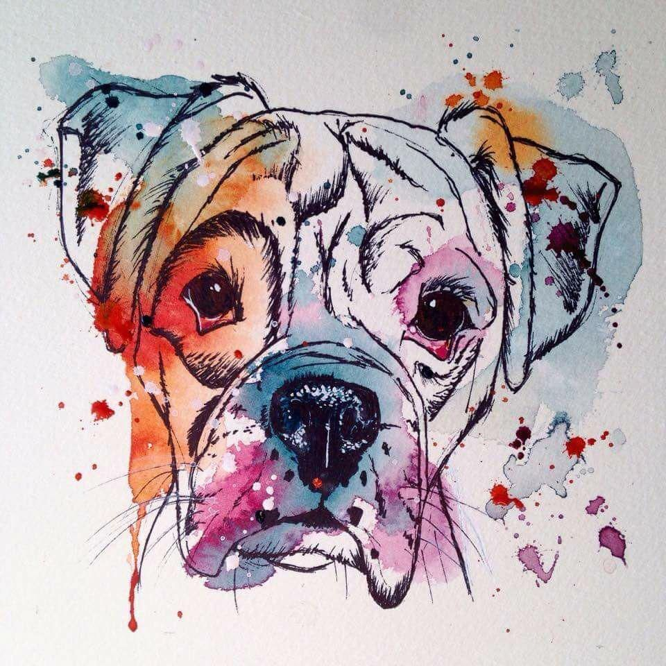 Ink and watercolour boxer … (With images) Boxer dog