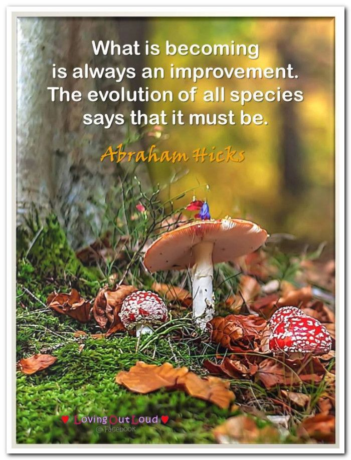 What is becoming is always an improvement. The evolution of all species says that it must be. Abraham-Hicks Quotes (AHQ2880)