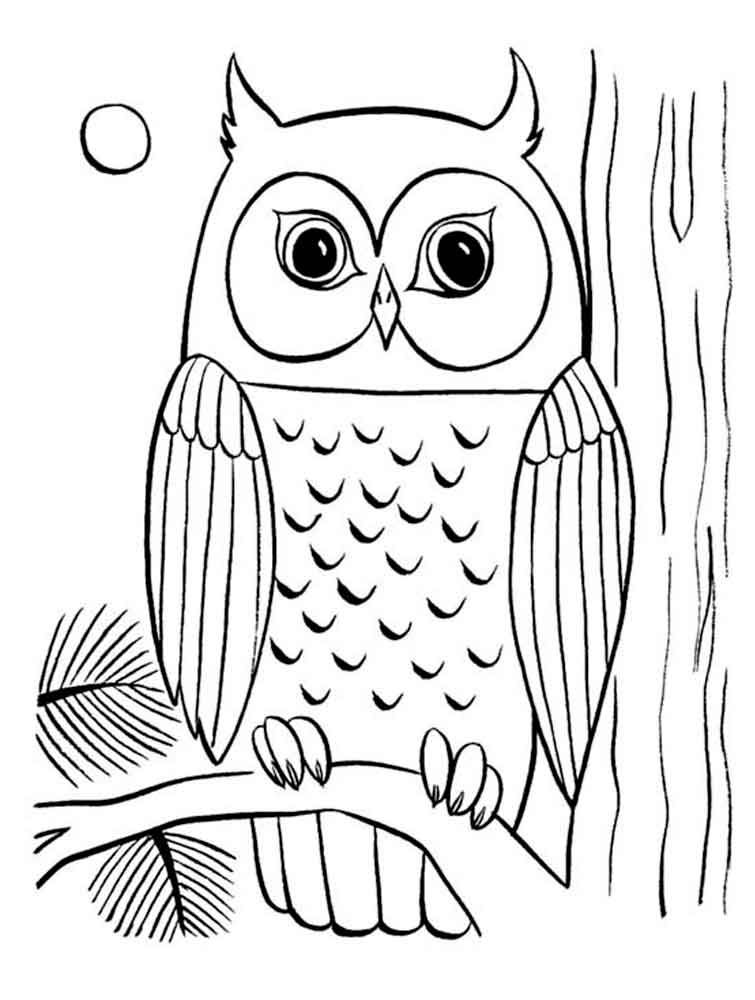 Image result for owl for coloring | Owls | Owl coloring ...