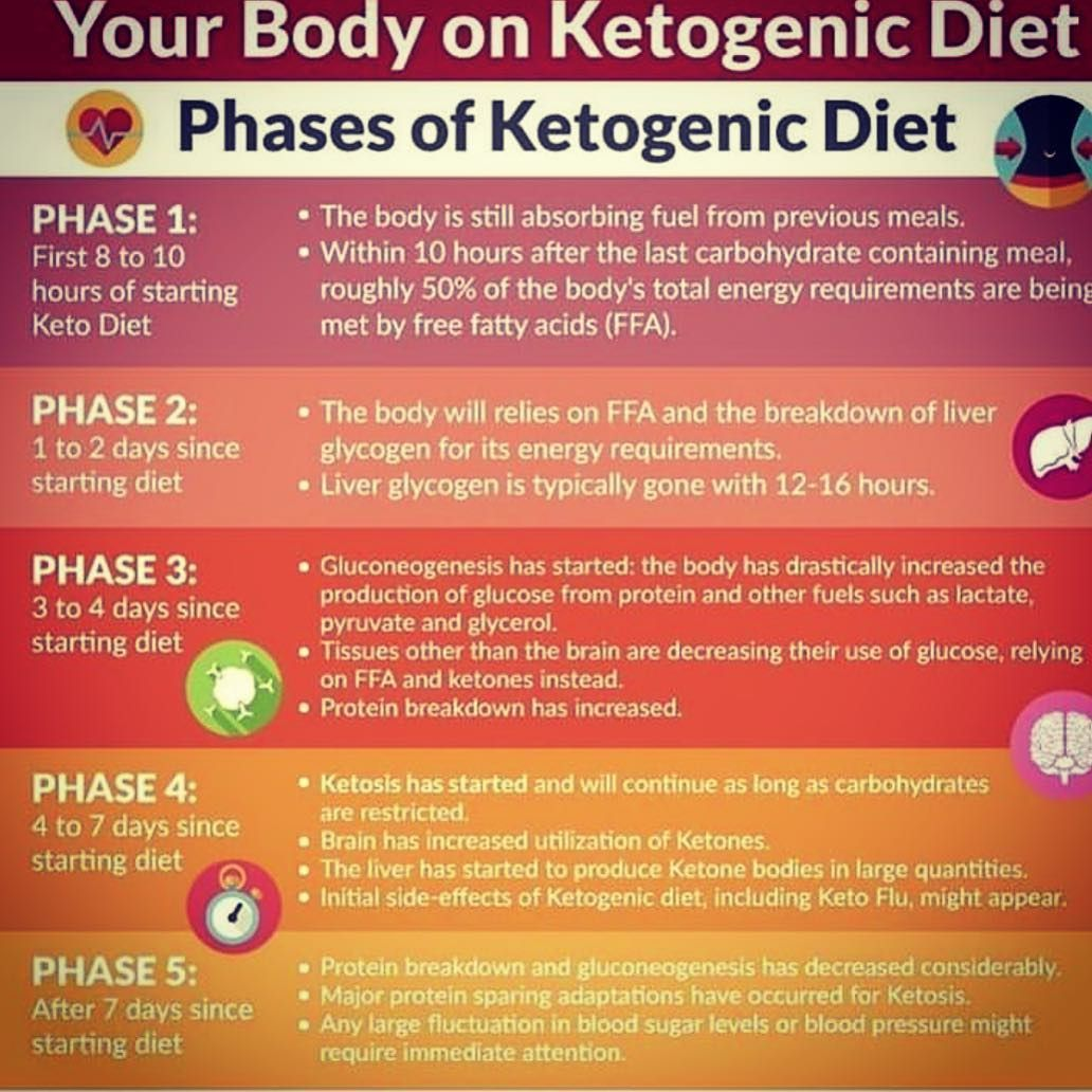 Pin On Keto Diet Intr And What You Can Eat