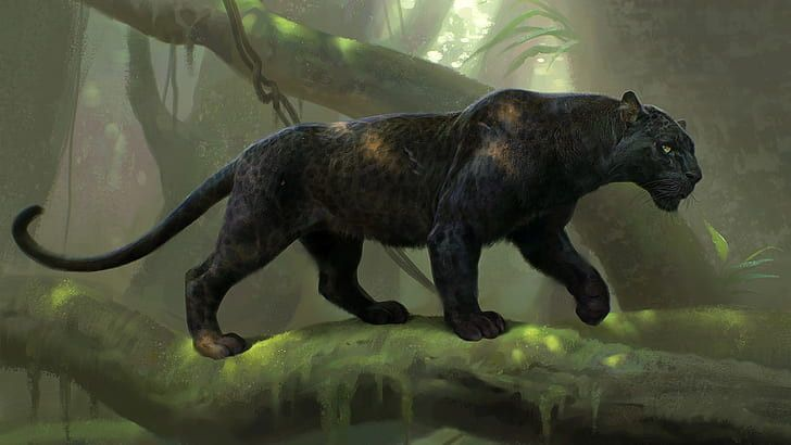 Black Panther Animal Wallpaper Hd Inspirational Hd Wallpaper Black Panther Digital Art Animal In 2020 Panther Pictures Big Cats Art Panther Art