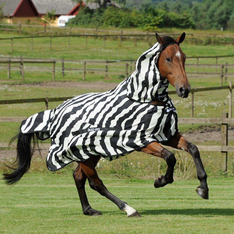 Bucas Buzz Off Zebra Full Neck Fly Rug Horse Blankets Fly Rugs Horses