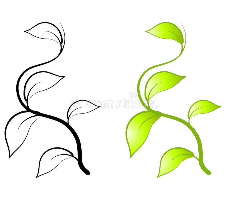 Green Leaves Vine Clip Art An Illustration Featuring Simple Green Leaf And Vine Sponsored Art Illustration Fe Vine Drawing Leaf Clipart Plant Drawing