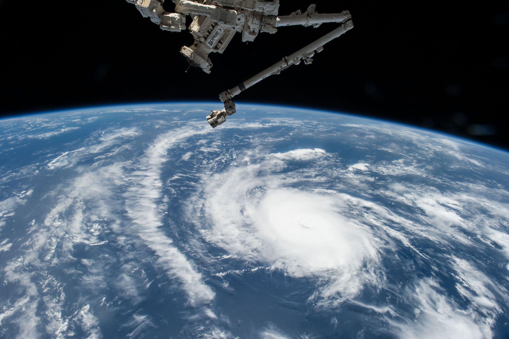 L'astronaute Scott Kelly a annoncé samedi dernier sur Twitter la bonne nouvelle: une zinnia a fleuri dans la Station spatiale internationale. C'est la première fois qu'une fleur plantée par un humain voit le jour dans l'espace.