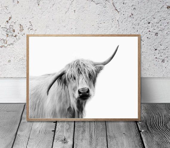 Cow Print Highland Cow Art Print Digital Print Farm Animal Wall Art Country Cottage Decor Kitchen Art Cattle Cow Art Print Highland Cow Art Cow Wall Art