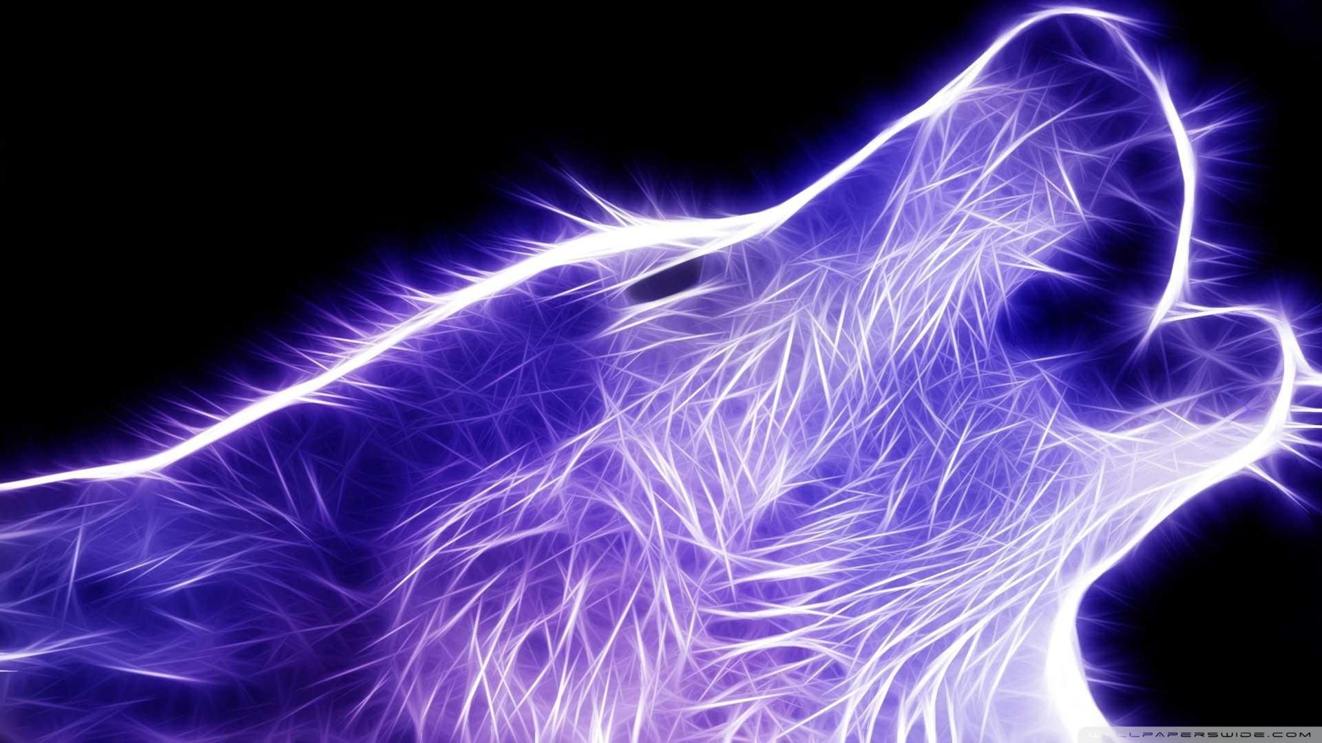 Neon Wolf Hd Desktop High Definition Animals Wallpapers Full On
