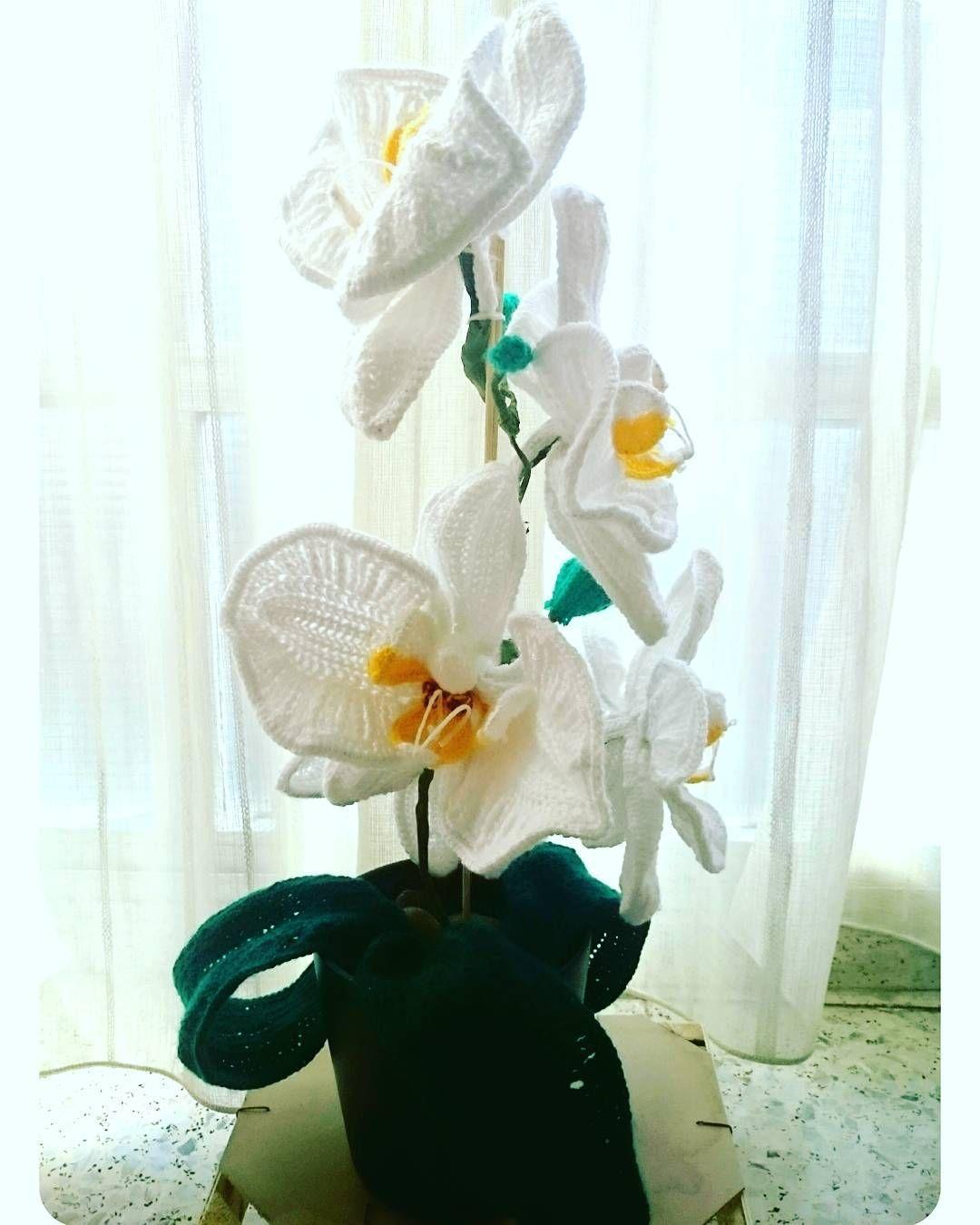 Y así finalmente quedó la orquídea del día de la Madre (se me había olvidado enseňarosla)  Si alguien desea una que no dude en mandarme un mensaje y hablamos   Feliz noche chicos    Crochet Phalaenopsis by charge.  #crochet #crochetersofinstagram #phalaenopsis #orchid #orquídea #orquidea #handmade #artesanal #flores #flowers #flower #instacrochet #gift #regalo by frikilandandmore