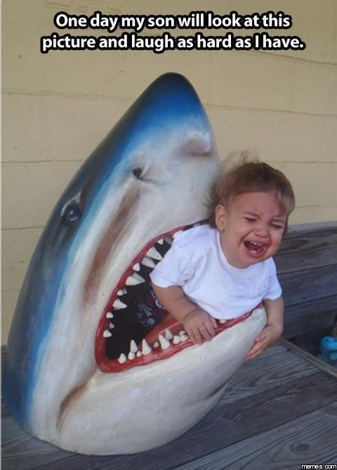 Baby Shark Attack Memes Com With Images Funny Commercials