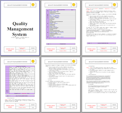 Quality Management System Sample Template  Fatimah
