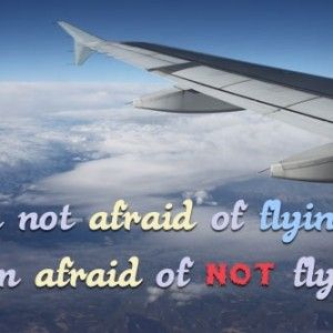 Flying Quotes Beauteous Funny Quotes About Flying  Thoughts Feelings Etc Pinterest