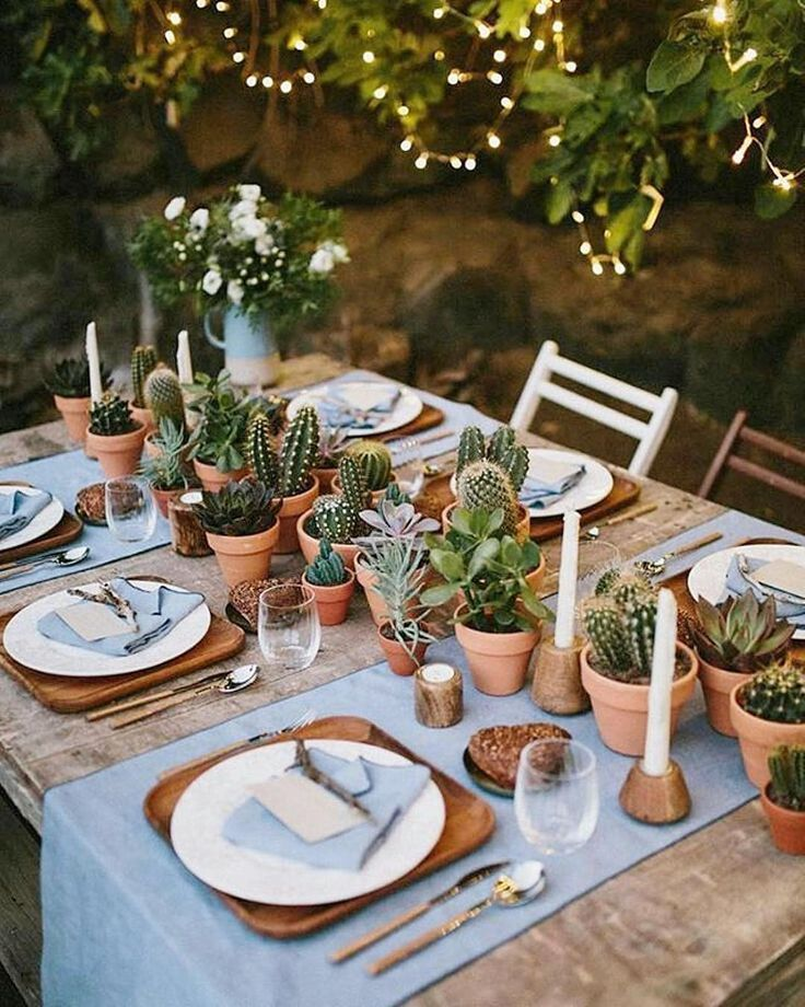 Rustic Wedding Decorations For Indoor And Outdoor Settings: Succulents As A Rustic Outdoor Tablescape, For Home