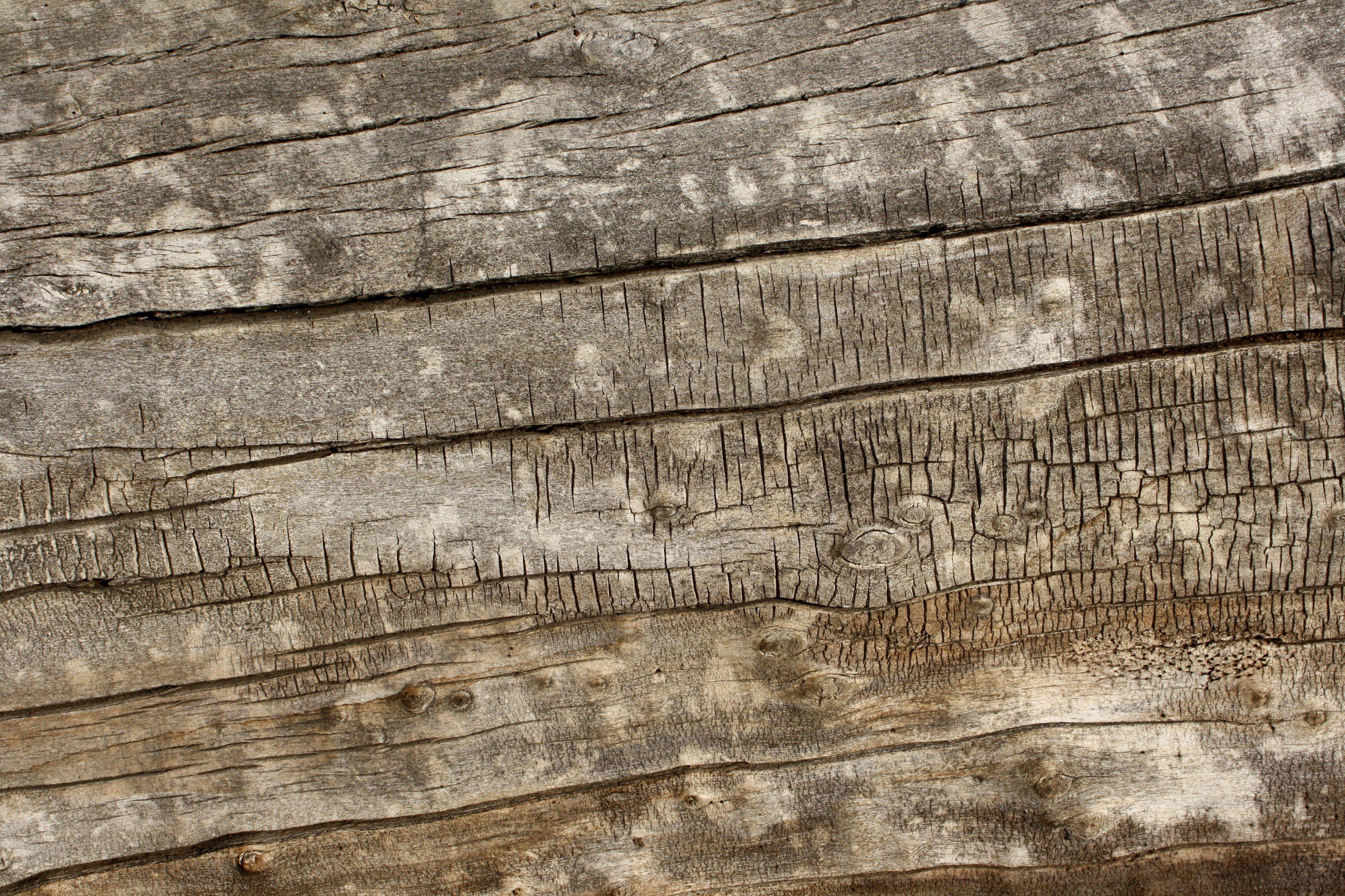 old wood chair texture - Recherche Google | Textures ...