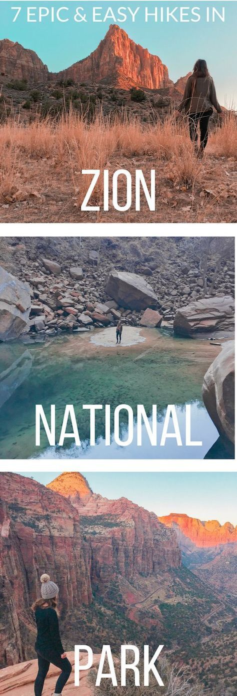 Photo of 7 Epic and Easy Hikes in Zion National Park – Reckless Roaming