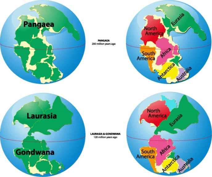 Evolution of earth continents