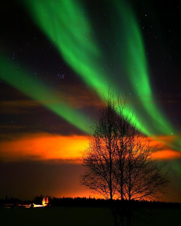 ✯ Chena Lake Aurora - Alaska
