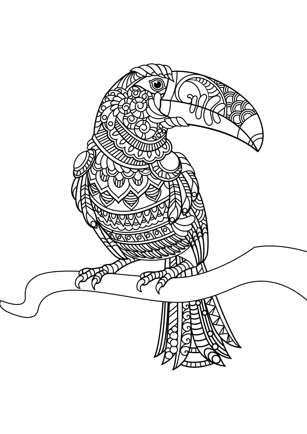animal coloring pages pdf coloring birds and feathers pinterest animal coloring pages. Black Bedroom Furniture Sets. Home Design Ideas