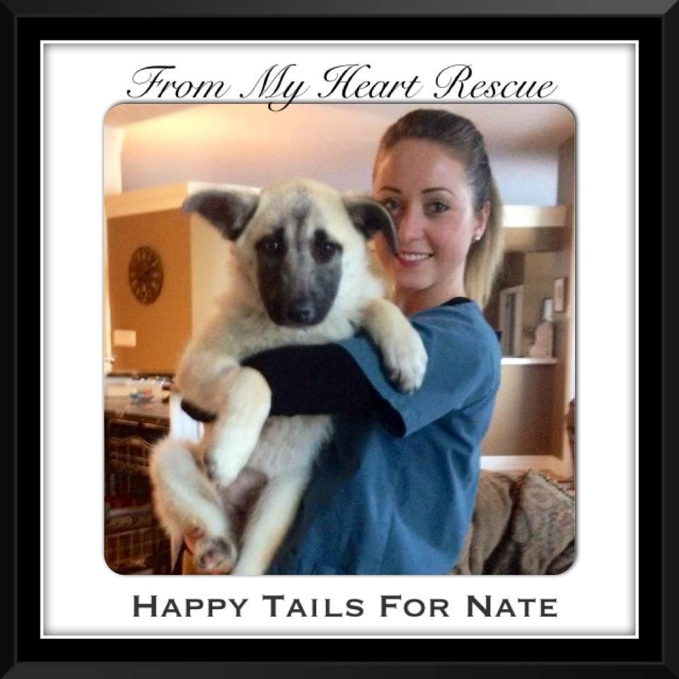 Please ♥+ PIN FMHR Happy Adoption Day for Nate