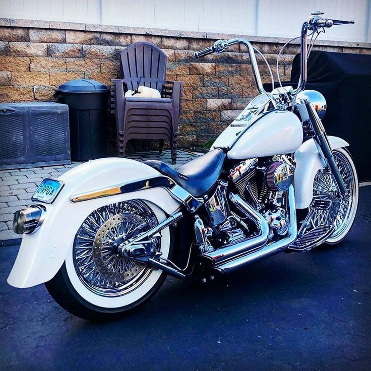 A great white harleydavidson love the particular