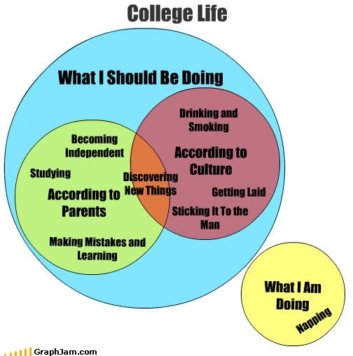 Nothing Wrong With Naps College Memes College Problems College Life
