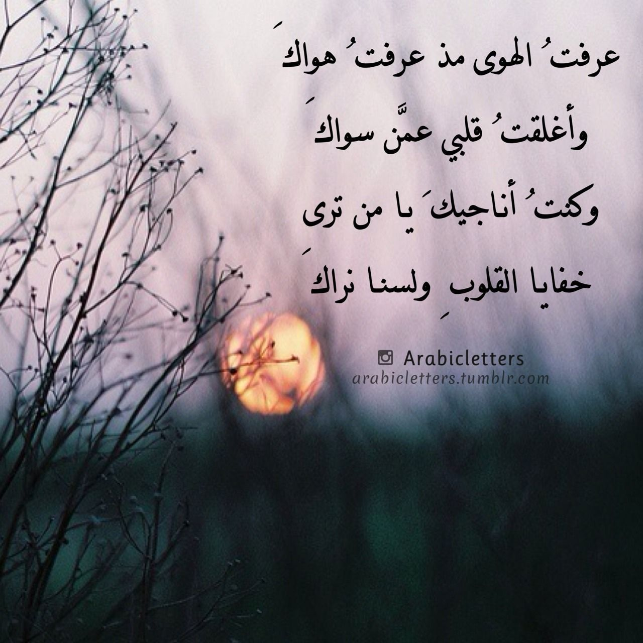 Arabic Letters الله Islamic Inspirational Quotes Cool Words Words Quotes