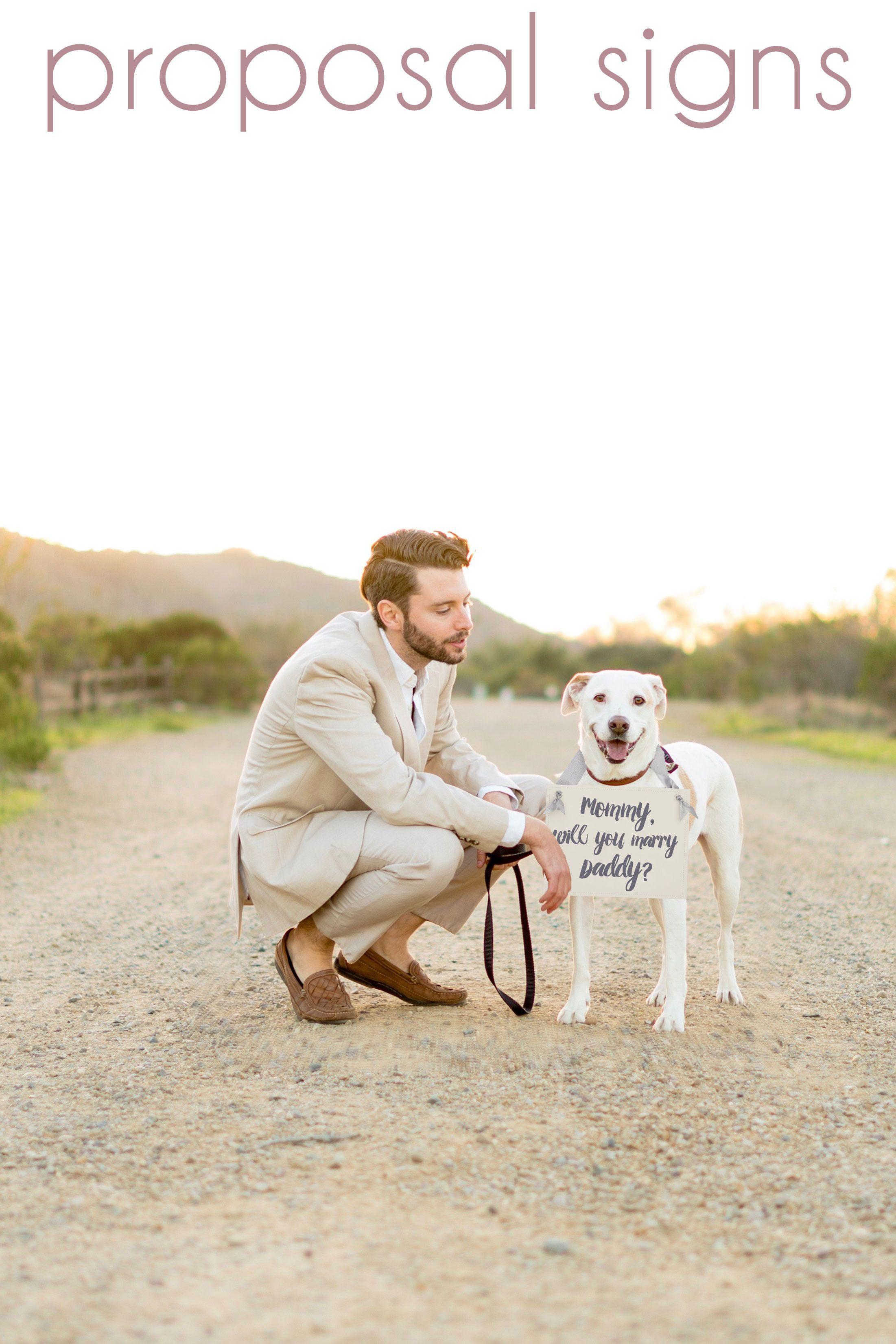 Proposal Signs Dog Training Near Me Puppy Training Dog Proposal