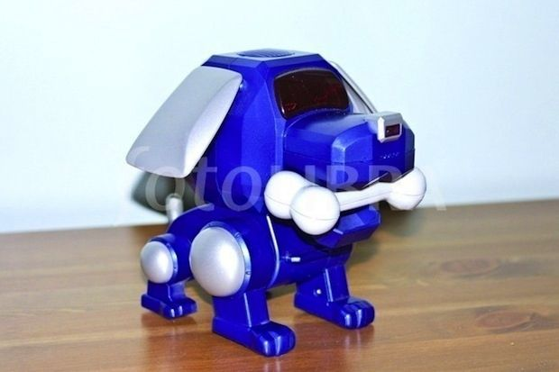 A Robot Dog That Does Flips The Poo Chi My Childhood Memories
