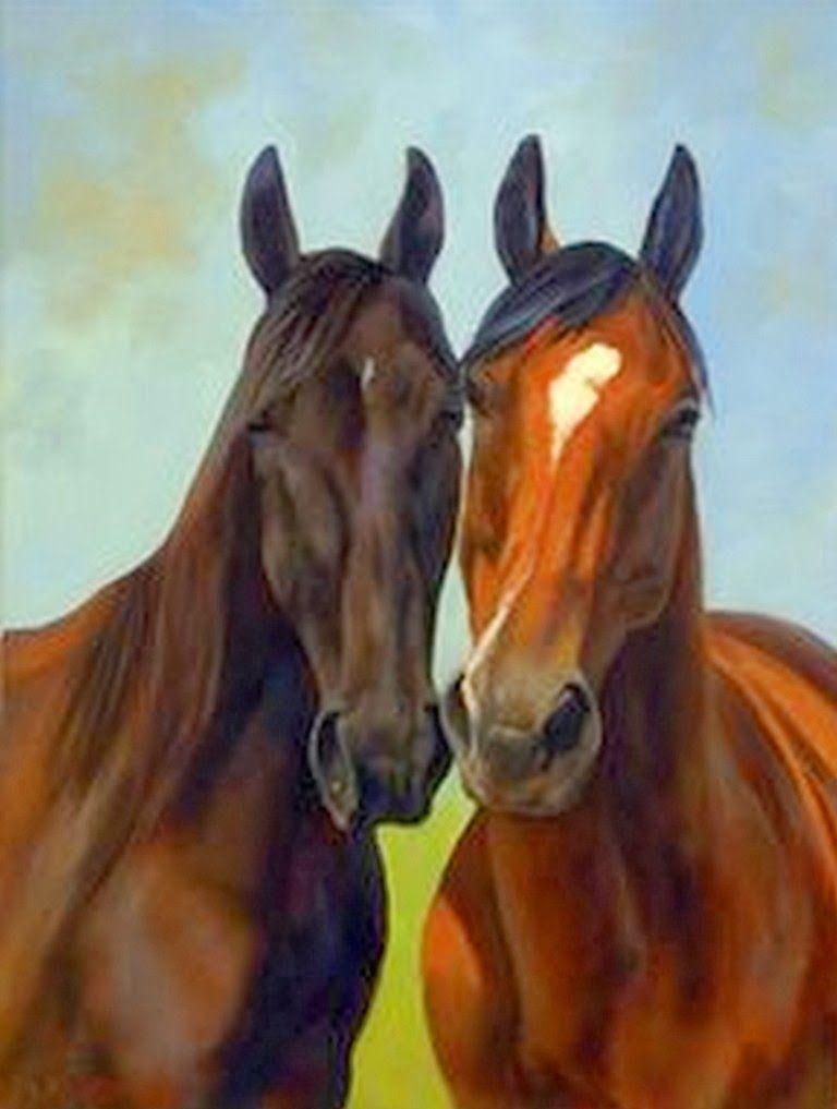 Pinturas hiperrealistas cabezas de caballos equine head study art pinterest pinturas - Cabezas animales tela ...